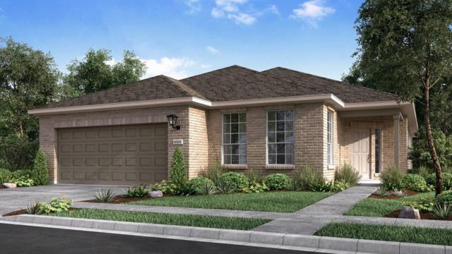 5016 Fiore Cv, Round Rock, TX 78665 (#7698248) :: Papasan Real Estate Team @ Keller Williams Realty