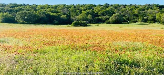 1471 Lutheran Church Ryatt Ranch Lot 4 Blk 1 Rd, Copperas Cove, TX 76522 (#7704013) :: The Perry Henderson Group at Berkshire Hathaway Texas Realty