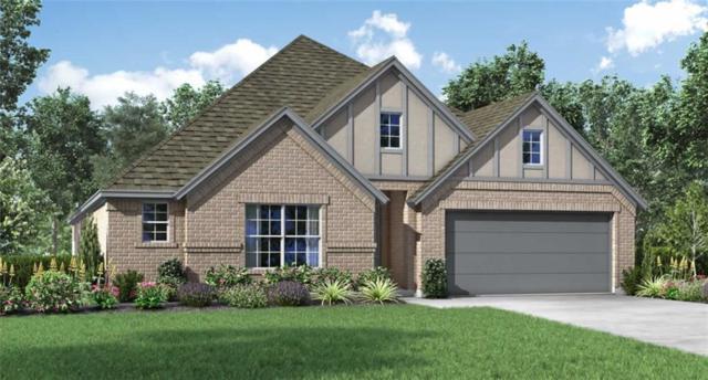 20216 Great Egret Ln, Pflugerville, TX 78660 (#7728139) :: Papasan Real Estate Team @ Keller Williams Realty