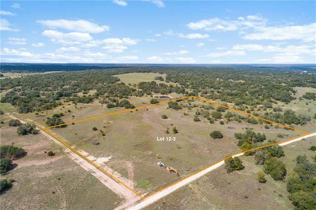 Tract 12 Cr 224, Briggs, TX 78608 (#7753637) :: RE/MAX IDEAL REALTY