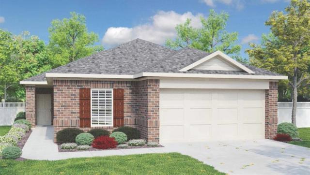 209 Purple Mountain Dr, Liberty Hill, TX 78642 (#7758932) :: The Heyl Group at Keller Williams
