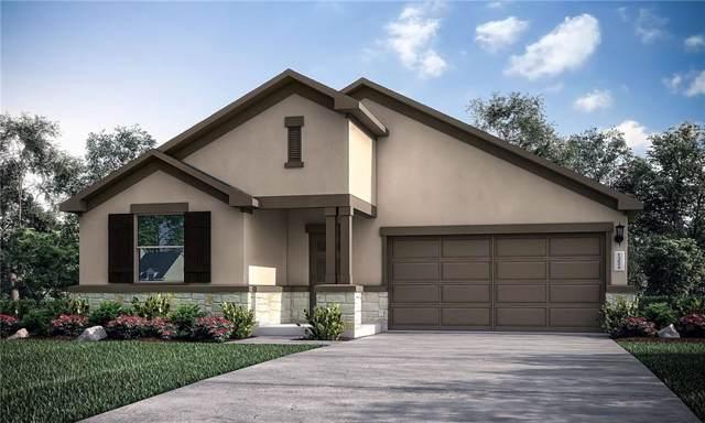 253 Magna Lane, Liberty Hill, TX 78642 (#7773875) :: Zina & Co. Real Estate