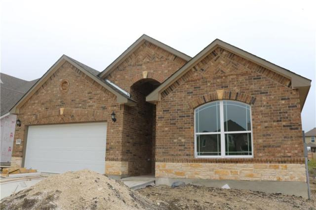 20417 Shellduck Dr, Pflugerville, TX 78660 (#7774438) :: Watters International