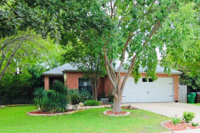 3402 Perch Trl, Round Rock, TX 78665 (#7780898) :: Austin Portfolio Real Estate - The Bucher Group
