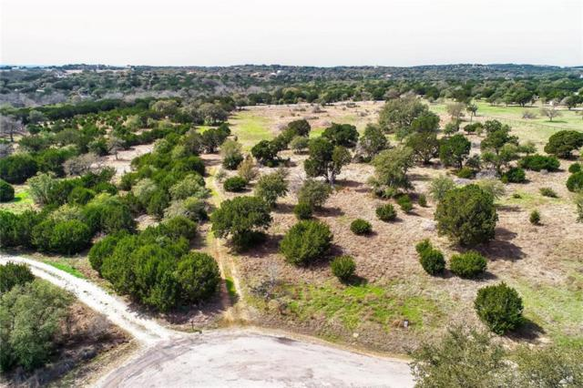 425 Dripping Springs Ranch Rd, Dripping Springs, TX 78620 (#7781442) :: The Heyl Group at Keller Williams