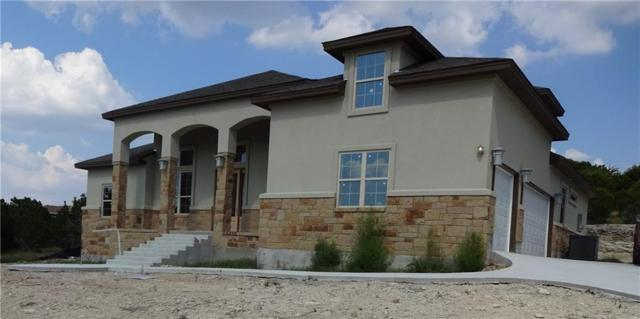 21208 Oak Dale Dr, Lago Vista, TX 78645 (#7781632) :: The Perry Henderson Group at Berkshire Hathaway Texas Realty