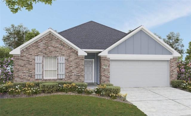 17304 Casanova Ave, Pflugerville, TX 78660 (#7812066) :: RE/MAX Capital City