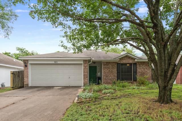 1813 Hollow Tree Blvd, Round Rock, TX 78681 (#7813630) :: The Heyl Group at Keller Williams