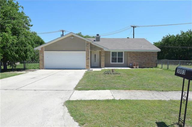 3003 Persimmon Dr, Killeen, TX 76543 (#7851543) :: RE/MAX Capital City