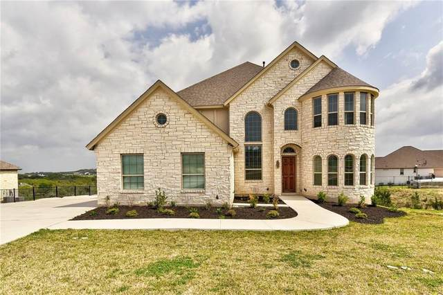 9313 Stratus Dr, Dripping Springs, TX 78620 (#7860543) :: Zina & Co. Real Estate