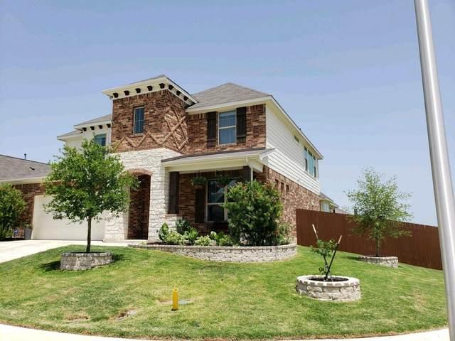 317 Rough Bark St, Buda, TX 78610 (#7860799) :: Zina & Co. Real Estate