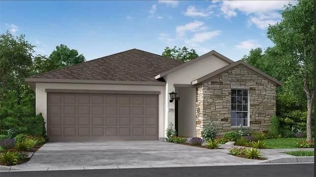 108 Yarbrough Dr, Dripping Springs, TX 78620 (#7867644) :: Papasan Real Estate Team @ Keller Williams Realty