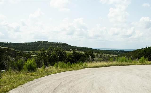 593 Julieanne Cv, Dripping Springs, TX 78620 (#7884302) :: Papasan Real Estate Team @ Keller Williams Realty