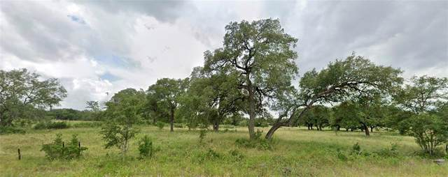 None Ranch Road 12 Rd, San Marcos, TX 78666 (#7889099) :: Ben Kinney Real Estate Team