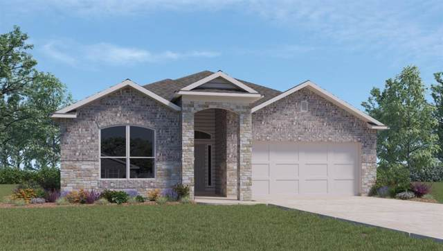 4225 Porter Farm Rd, Georgetown, TX 78628 (#7897841) :: 12 Points Group