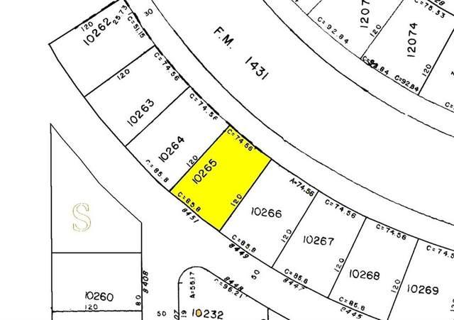 8451 Corral Ln, Lago Vista, TX 78645 (#7901833) :: Green City Realty