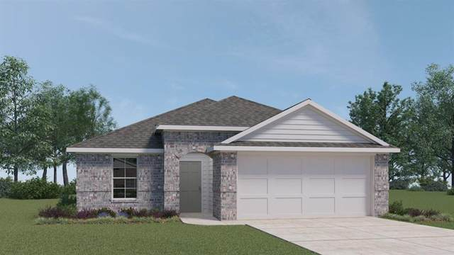 204 Spotted Bass Ln, San Marcos, TX 78666 (MLS #7944269) :: Bray Real Estate Group