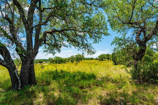 Lot 140 Cedar Mountain Dr, Spicewood, TX 78669 (#7987073) :: Front Real Estate Co.