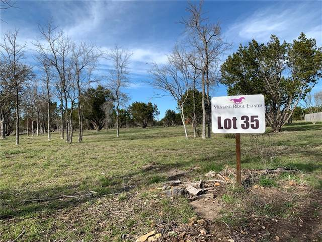 Trophy Oak Trail Trophy Oak Trl, Marble Falls, TX 78654 (#7987335) :: 12 Points Group