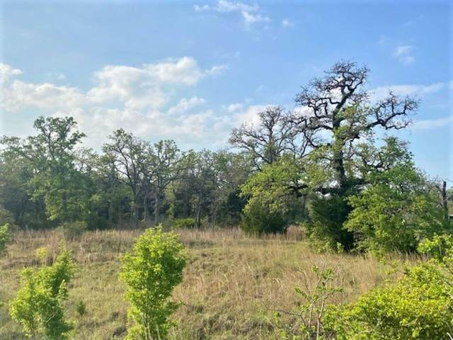TBD County Road 430, Dime Box, TX 77853 (#7995320) :: ORO Realty