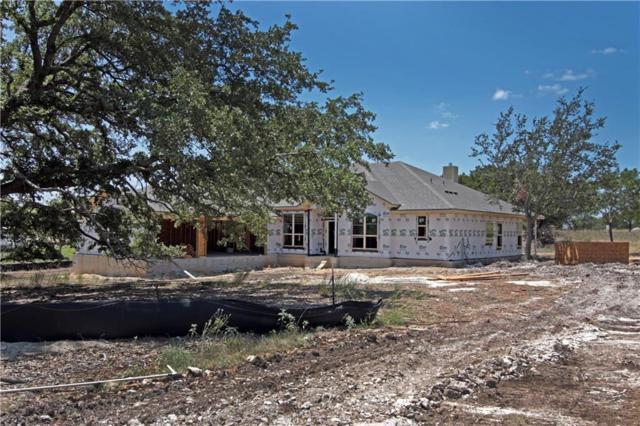 105 Deck Dr, Georgetown, TX 78633 (#8004186) :: RE/MAX Capital City