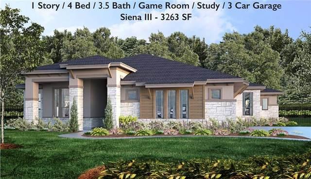 18912 Excusrion Falls Way, Jonestown, TX 78645 (#8028906) :: Papasan Real Estate Team @ Keller Williams Realty