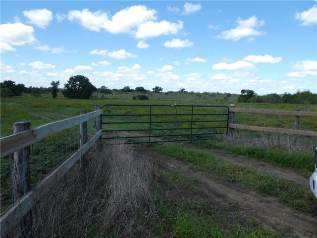 Red Rock, TX 78662 :: Papasan Real Estate Team @ Keller Williams Realty