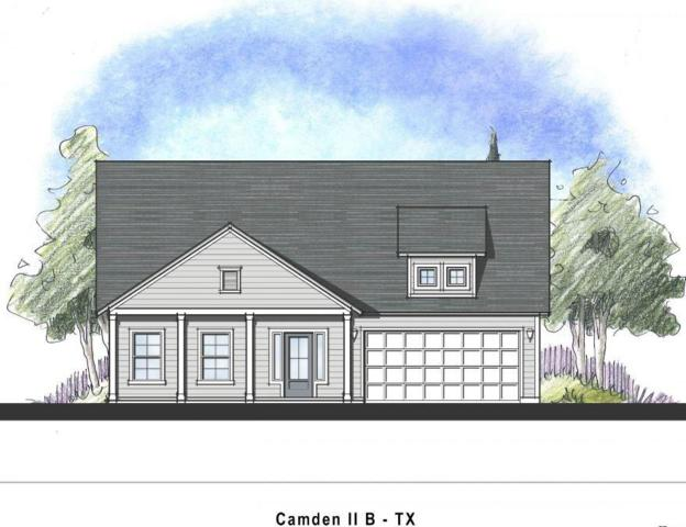 217 Orchard Park Drive, Liberty Hill, TX 78642 (#8071126) :: Forte Properties