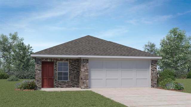 19024 Romano Dr, Elgin, TX 78621 (MLS #8072320) :: Vista Real Estate