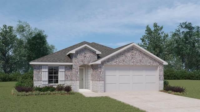 113 Half Moon Ct, San Marcos, TX 78666 (#8118172) :: Ben Kinney Real Estate Team