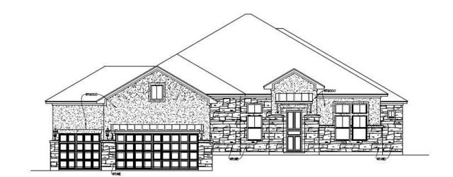 1373 Bearkat Canyon Dr, Dripping Springs, TX 78620 (#8119751) :: Ben Kinney Real Estate Team