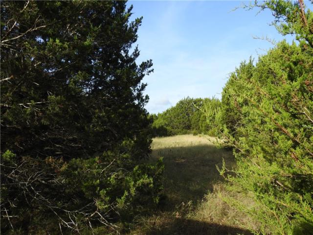 TBD Lot 33 A Oak Bend Dr, Liberty Hill, TX 78642 (#8127626) :: The Perry Henderson Group at Berkshire Hathaway Texas Realty