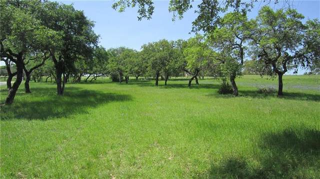 2608 Sailboat Pass, Spicewood, TX 78669 (#8127683) :: Front Real Estate Co.