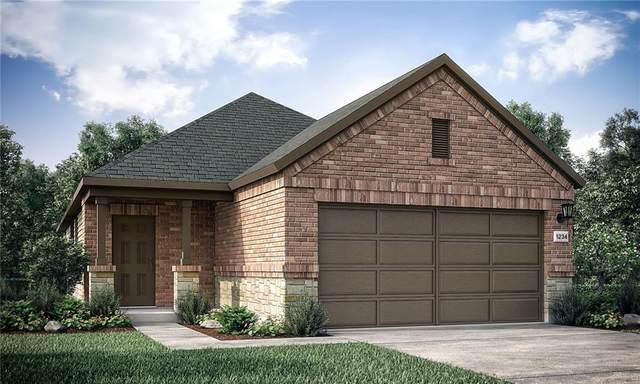 151 Breccia Trl, Liberty Hill, TX 78642 (#8130701) :: Papasan Real Estate Team @ Keller Williams Realty