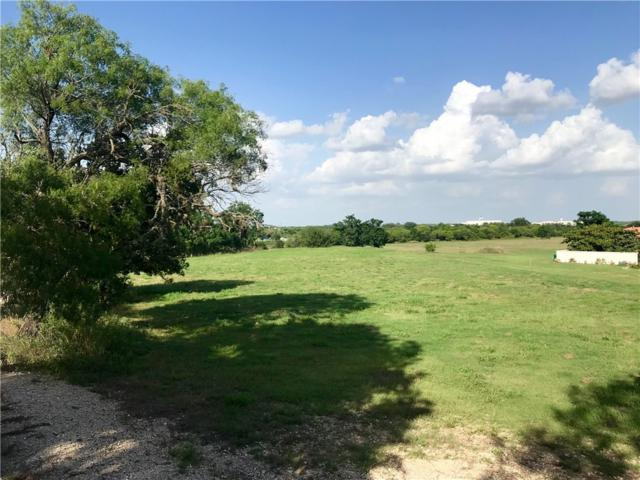420 Blanco River Ranch Rd, San Marcos, TX 78666 (#8136532) :: The Perry Henderson Group at Berkshire Hathaway Texas Realty