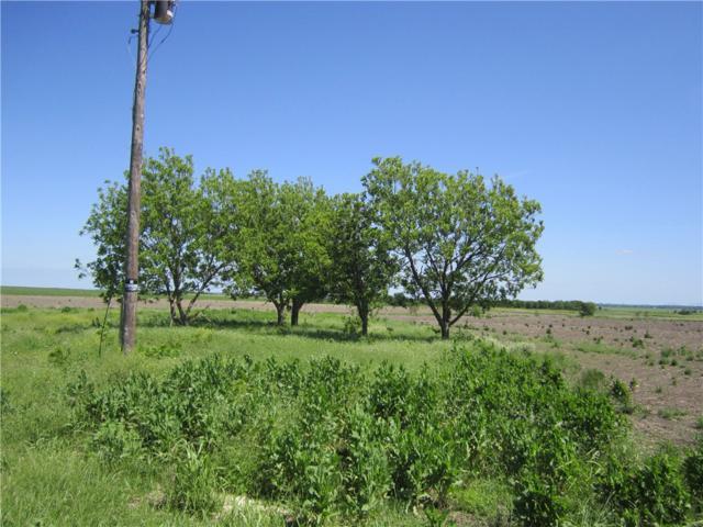 250 County Road 159, Granger, TX 76530 (#8152100) :: The Heyl Group at Keller Williams