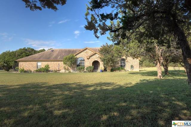 370 Forest Trl, New Braunfels, TX 78132 (#8160424) :: Zina & Co. Real Estate