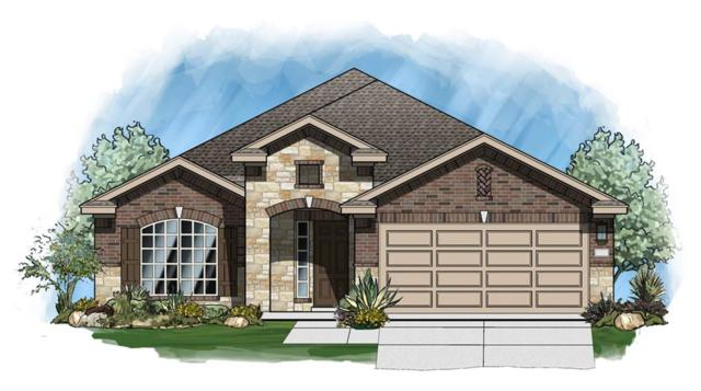 1120 Chad Dr, Round Rock, TX 78665 (#8160856) :: The ZinaSells Group