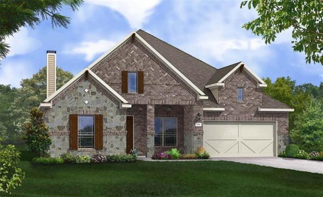 20645 Mouflon Dr, Pflugerville, TX 78660 (#8161523) :: Ana Luxury Homes