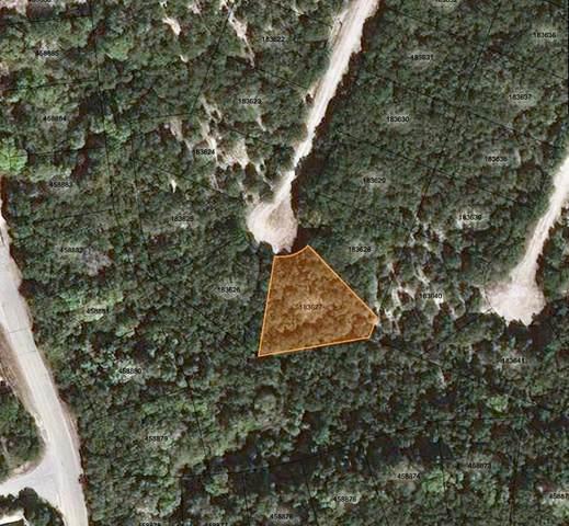 8601 Tegua Cv, Lago Vista, TX 78645 (#8163391) :: Papasan Real Estate Team @ Keller Williams Realty