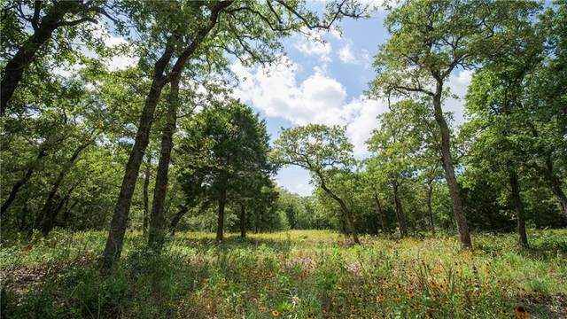 TBD Perry Lane, Thorndale, TX 76577 (MLS #8163593) :: Vista Real Estate