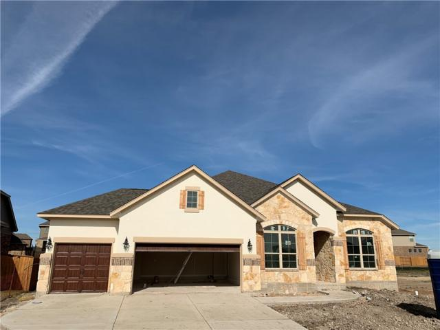 3534 Ponce De Leon Pass, Round Rock, TX 78665 (#8164643) :: Ben Kinney Real Estate Team