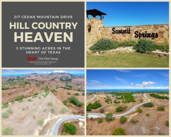 317 Cedar Mountain Dr, Spicewood, TX 78669 (#8169595) :: 12 Points Group