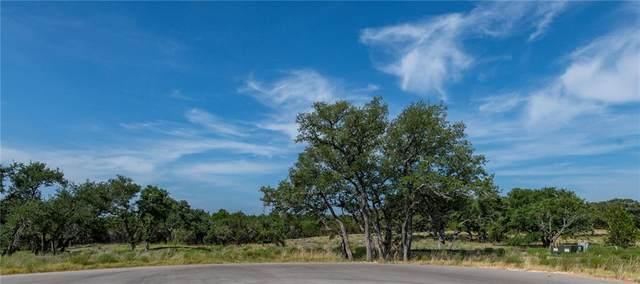 330 Calvary Cv, Dripping Springs, TX 78620 (#8184532) :: The Heyl Group at Keller Williams