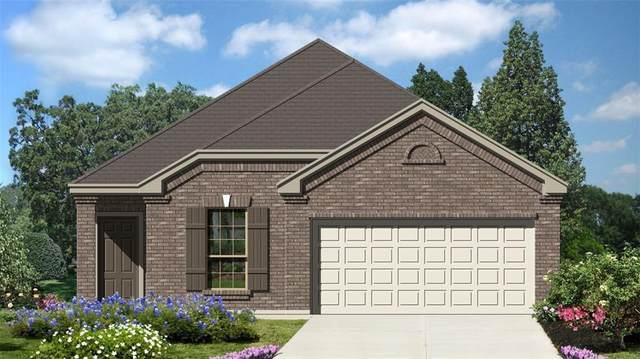 2815 Wheatfield Way, New Braunfels, TX 78130 (#8193525) :: Green City Realty