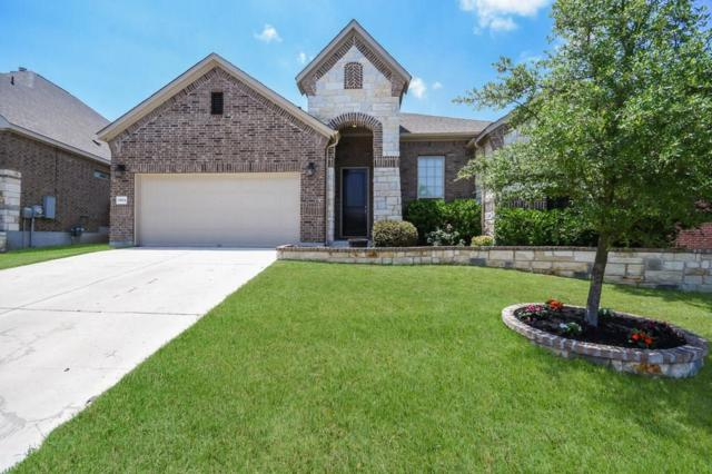 19804 Cerridwen Dr, Pflugerville, TX 78660 (#8200770) :: The Perry Henderson Group at Berkshire Hathaway Texas Realty
