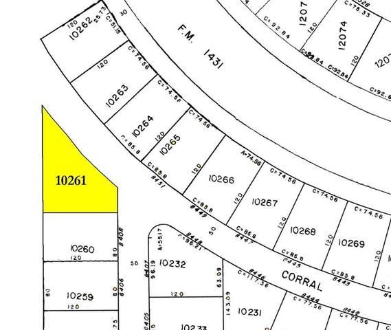 8452 Corral Ln, Lago Vista, TX 78645 (#8207292) :: Papasan Real Estate Team @ Keller Williams Realty