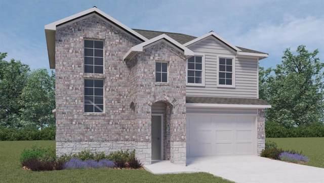 105 Falco Ln, San Marcos, TX 78666 (MLS #8214103) :: Bray Real Estate Group