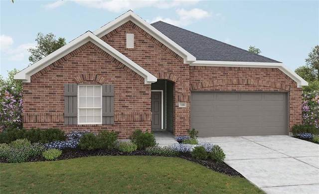 205 Treasure Trove Path, Kyle, TX 78640 (#8215523) :: Von Austin Properties
