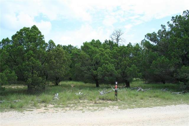 104 River Rapids Rd, Wimberley, TX 78676 (#8221513) :: Azuri Group | All City Real Estate